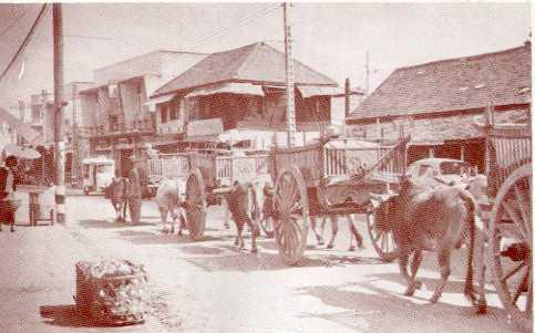 ขบวนเกวียนรุ่นสุดท้ายบนถนนในเมือง เป็นขบวนเกวียนรุ่นสุดท้ายที่เข้ามาบนถนนในเขตเทศบาลนครเชียงใหม่     ก่อนที่เทศบาลนครเชียงใหม่     เริ่มประกาศห้ามนำเกวียน ในเขตเทศบาล     ตี้งแต่ พ.ศ. 2499 ภาพนี้ถ่ายที่     ถนนช้างม่อย ตอนโค้งวัดหนองคำ ปี พ.ศ. 2510